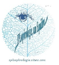 logo BRENIAUX Christèle - Sophrologue